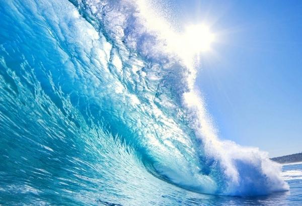LAVAPAVIMENTI SGRASSANTE OCEAN